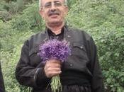 L'Iran condanna l'azione turca Siria, arresta sindacalisti curdi aver protestato contro Ankara…