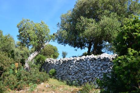 Weekend lungo di Ognissanti sul Gargano tra trekking e masserie