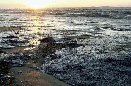 Risultati immagini per nord est inquinato in brasile