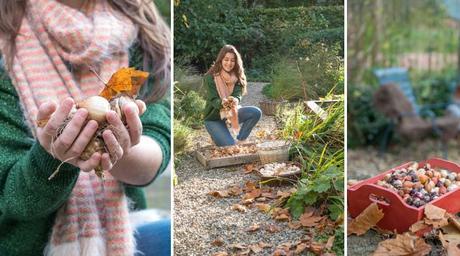 Piantare i bulbi in autunno