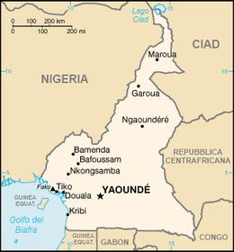 Risultati immagini per camerun cartina