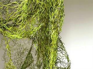 Schermi divisori da giardino algue vitra paperblog - Divisori da giardino ...