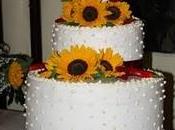 11/06/11...un bellissimo matrimonio: MIO!
