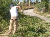 Gela-Manfria,Cittadini dimenticati trasformano addetti alla pulizia delle strade