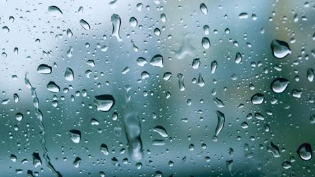 Non può piovere per sempre e le Zebre, intanto, delocalizzano. Nessun arbitro italiano nel Sei Nazioni 2020