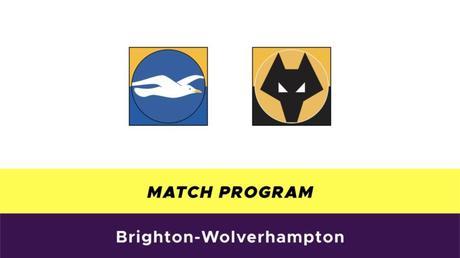 Brighton-Wolverhampton probabili formazioni