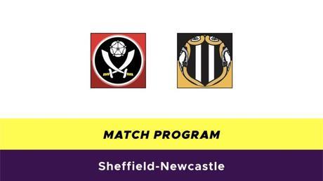 Sheffield-Newcastle probabili formazioni
