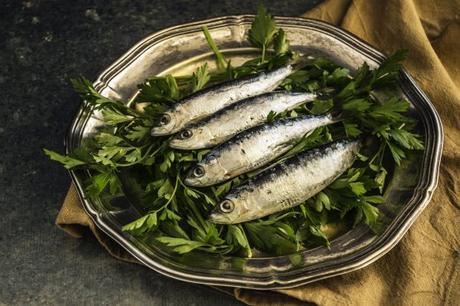 """Chi mangia sardine campa cent'anni… a carico dello Stato! E una storia delle """"sardine"""" dalle origini a oggi."""
