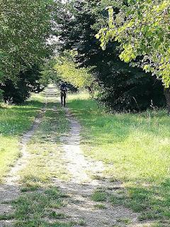 Il cammino burocratico della Via Francigena