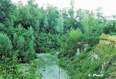 Il Parco Regionale dello Stirone