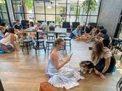 Corgi Garden: Bangkok dog-cafè gestito cani