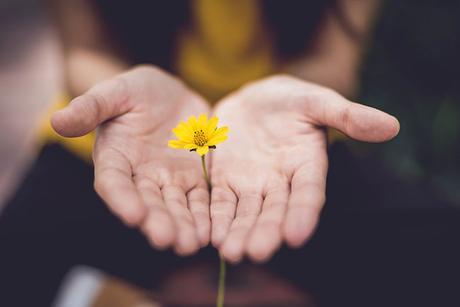 La fatica del perdono: come (e perché) imparare a perdonare