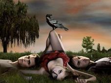 Vampire Diaries anticipazioni futuro triangolo amoroso