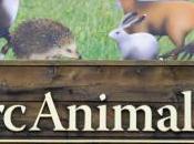 Parc Animalier d'Introd (Aosta)