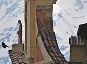 post terremoto L'Aquila: letteratura realtà?