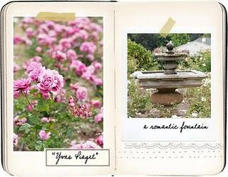 Crea anche tu il diario del tuo giardino paperblog for Crea il tuo giardino