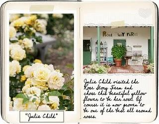 Crea anche tu il diario del tuo giardino paperblog - Crea il tuo giardino ...