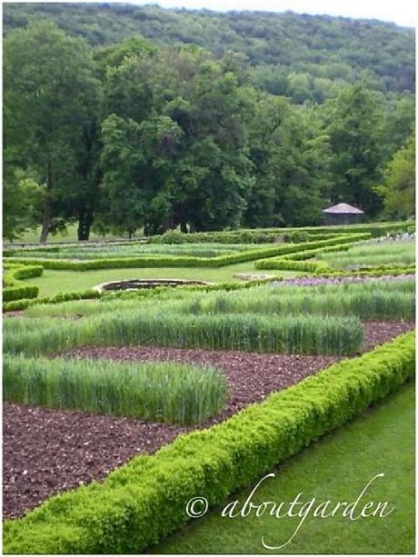 Giardini francesi le jardin de barbirey paperblog for Giardini francesi
