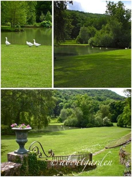 Giardini francesi le jardin de barbirey paperblog for Laghetti nei giardini