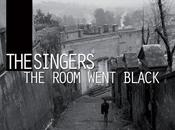 Uscite discografiche 2011: Singers Room Went Black