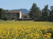 Toscana, Treno-trekking Mugello