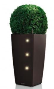 Arredare con le piante di giorno come di notte grazie for Arredare il giardino con le piante