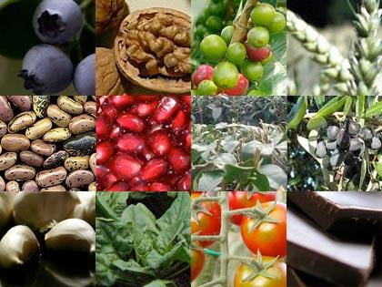 12 alimenti dal Regno vegetale che aiutano a migliorare il ...
