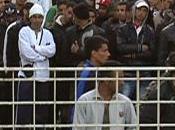 ritorno Lampedusa, pervasa impotenza.
