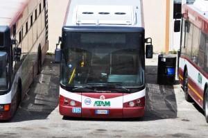 Reggio Calabria, ATAM in lotta, il sostegno del PDCI