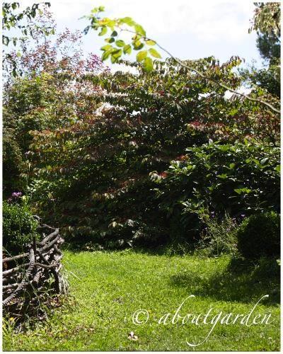 Giardini francesi jardin de maurice laurent paperblog for Giardini francesi