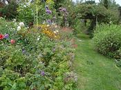 giardino mezza estate