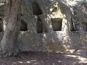 ARCHEOLOGIA SARDA: Visita all'altare rupestre Santo Stefano- Oschiri