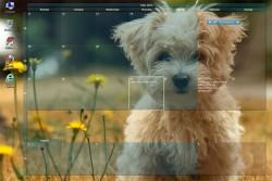 Calendario integrato nel desktop: come fare?