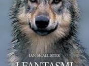 letture della Fenice: RECENSIONE fantasmi foresta McAllister