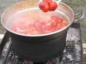 Batterio killer pomodori. Maxisequestro Latina