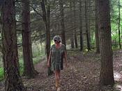foresta mago Merlino