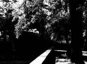 Lomography scatti Bencini Comet Agfa RETRO