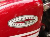 """Harley Sportster 1200 """"Scrambler"""" Monsooon"""