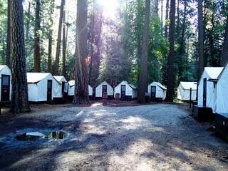 Una gita allo Yosemite National Park: pro e (ebbene sì) contro