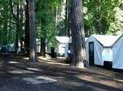 gita allo Yosemite National Park: (ebbene contro