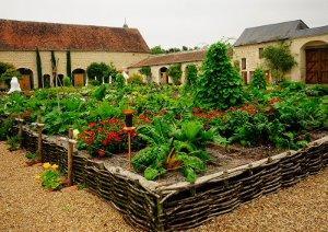 Jardin du ch teau du rivau paperblog - L orto in giardino ...