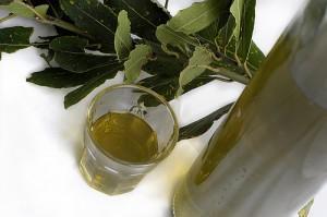 Puglia: il Liquore di Alloro
