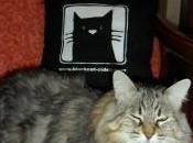 Borsa gatto