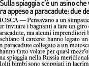 """""""Sulla spiaggia asino vola"""". appeso paracadute: denunce"""
