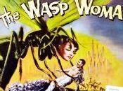 L'eterna lotta papero vespe