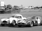 """Enzo Ferrari Carroll Shelby """"The Snake Stallion"""""""