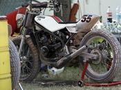 Dirt Toys