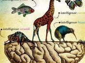 Organismi Festival dell'Intelligenza Collettiva, dedicato alla Rete alle Nuove Economie