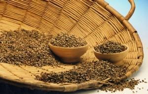 cereali-grano-saraceno