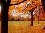 Welcome autumn... risotto zucca kabocha melograno